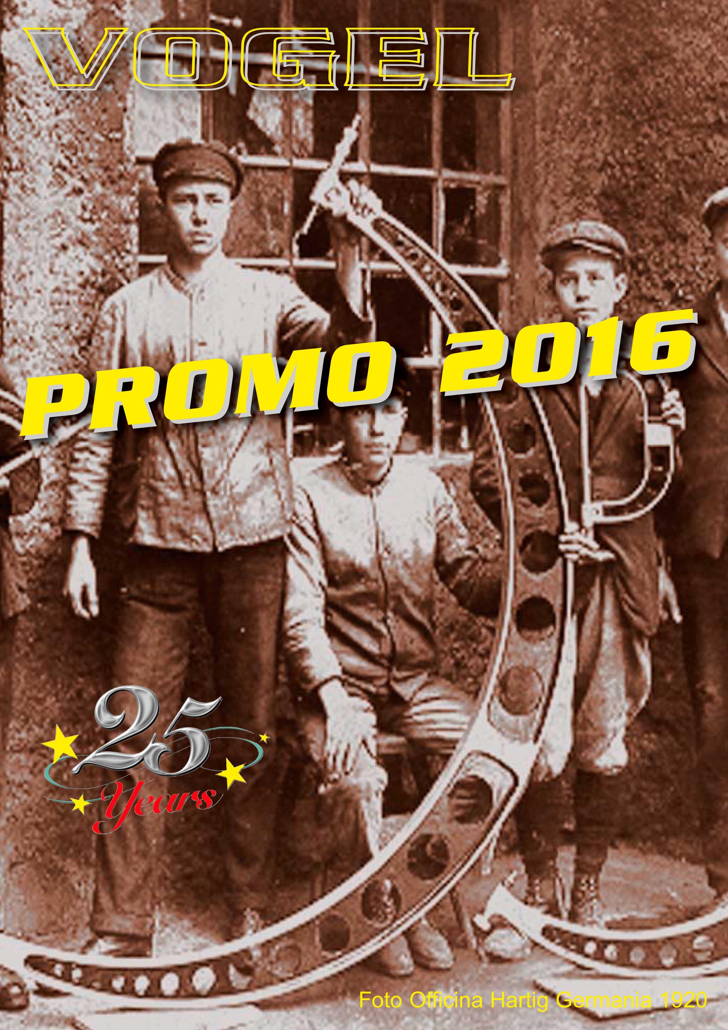 immagine-promo-vogel